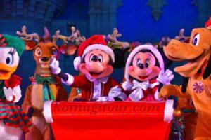 WDW クリスマス
